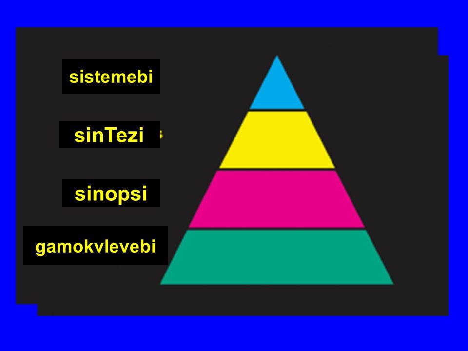 gamokvlevebi sistemebi sinTezi sinopsi