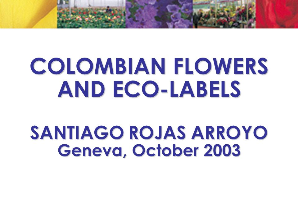COLOMBIAN FLOWERS AND ECO-LABELS SANTIAGO ROJAS ARROYO Geneva, October 2003