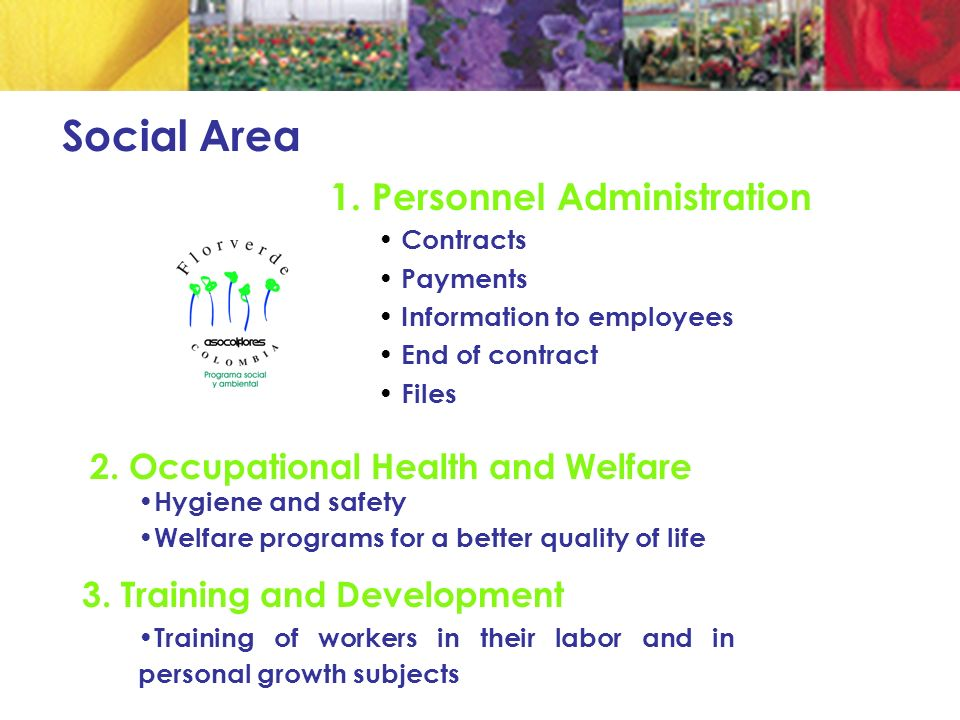 1. Personnel Administration Contracts Payments Information to employees End of contract Files Social Area 2. Occupational Health and Welfare Hygiene a