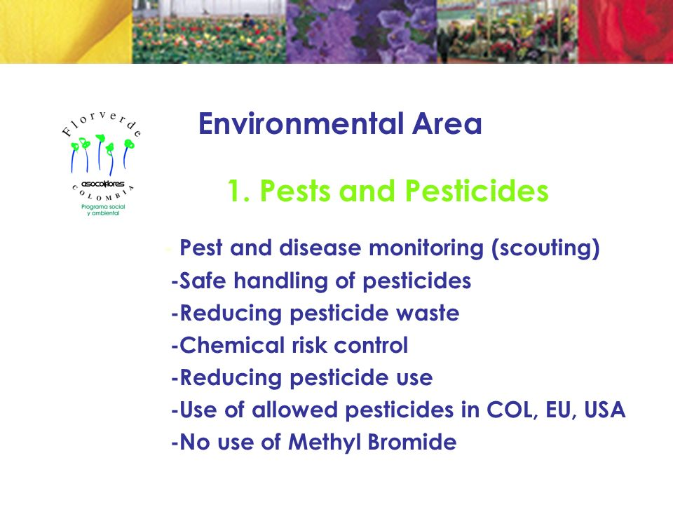 1. Pests and Pesticides - Pest and disease monitoring (scouting) -Safe handling of pesticides -Reducing pesticide waste -Chemical risk control -Reduci
