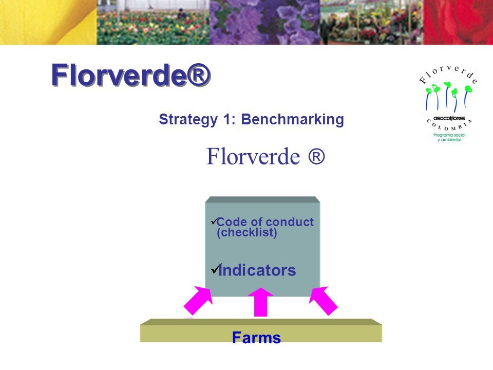 Code of conduct (checklist) Indicators Farms Florverde ® Strategy 1: Benchmarking Florverde®