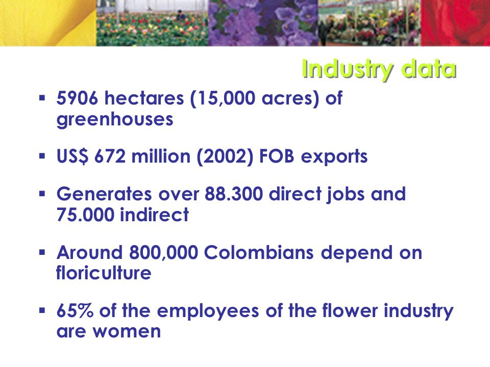 Flowers are the first non traditional export (10.5% of NTE) Flowers represent 4% of agricultural GDP Equivalent to 16% of the GDP for the Bogotá- Cundinamarca region Flowers exports account for 85% of the international air cargo of Colombia´s main airport (El Dorado)