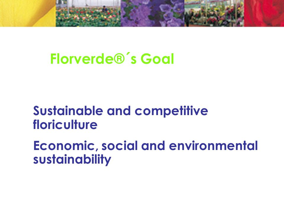 Florverde®´s Goal Sustainable and competitive floriculture Economic, social and environmental sustainability
