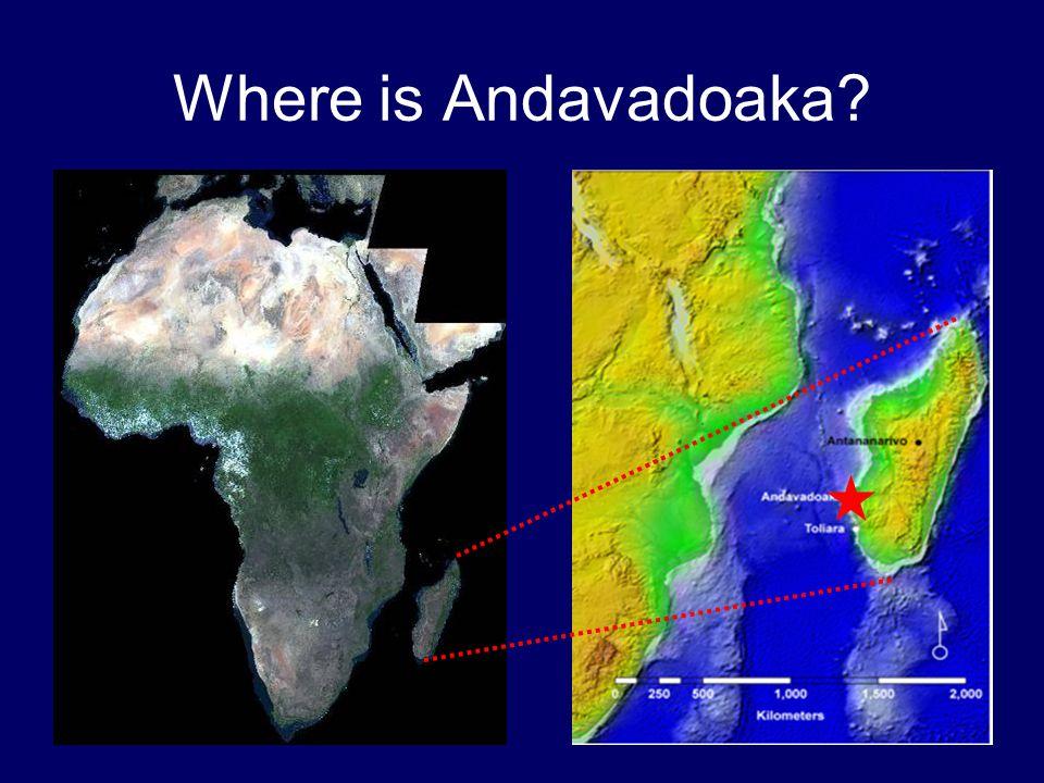 Where is Andavadoaka?