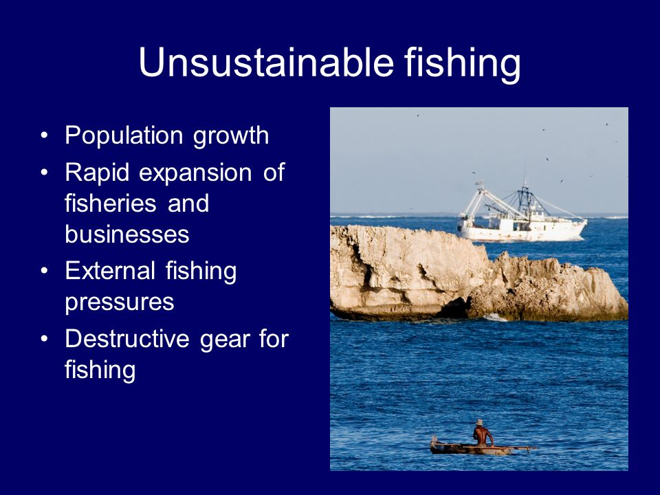 Our concerns Enforcement & legislation Outside commercial interest in community natural resources beyond community control –Commercial trawlers –Blue Reef luxury hotel development project