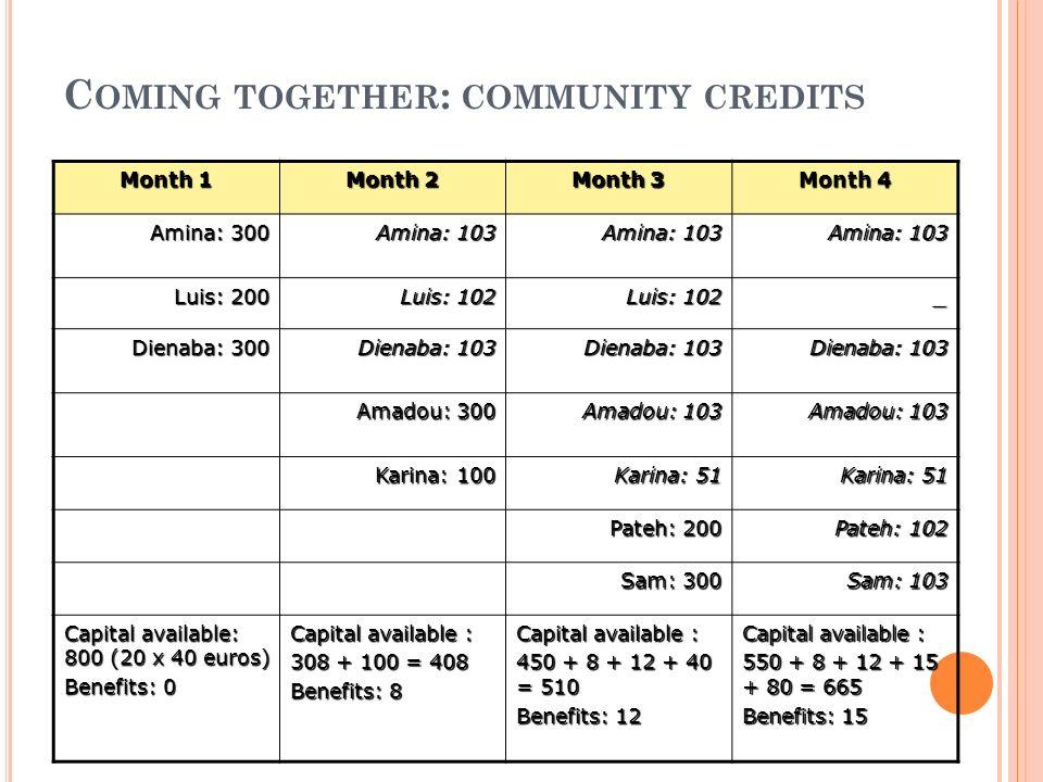 O FFERRED SERVICES Community basedCompany based Community credits (100-2.500 euros) Credits for entrepreneurs (3.000-30.000 euros) Emergency fundsInsurances Coffee pagesFormal employment
