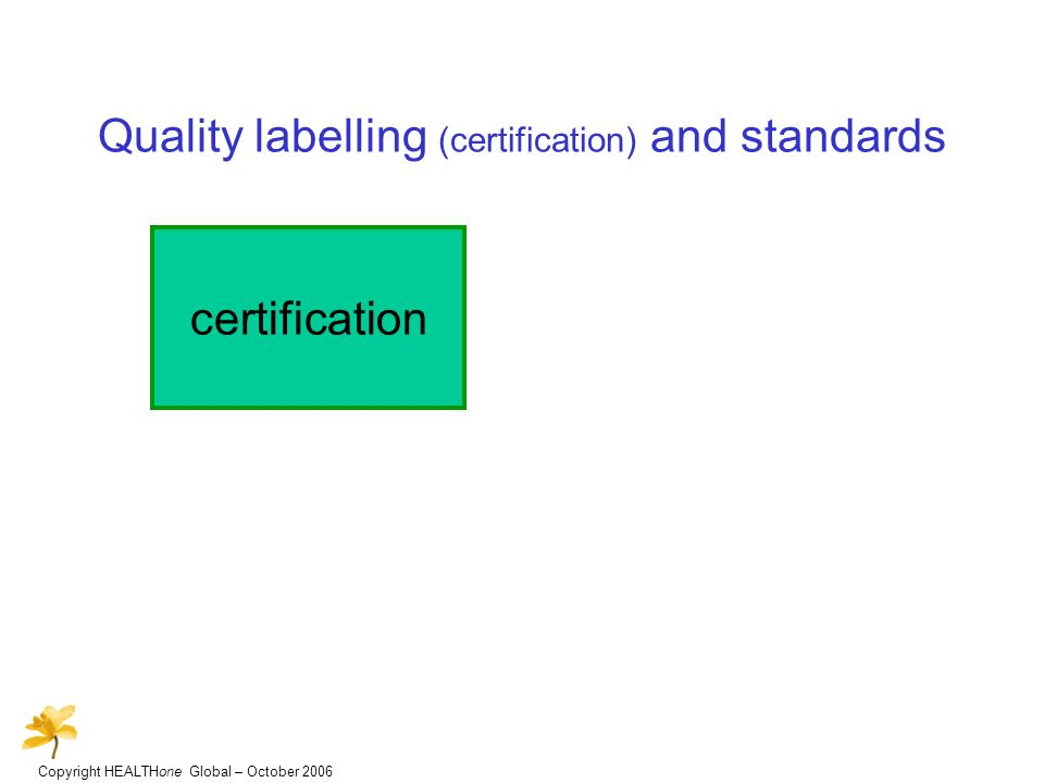 Copyright HEALTHone Global – October 2006 Quality labelling (certification) and standards certification