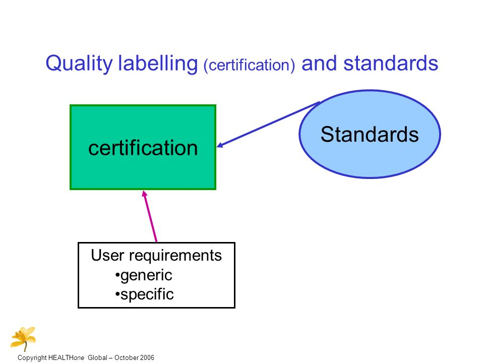 Copyright HEALTHone Global – October 2006 Quality labelling (certification) and standards certification User requirements generic specific Standards
