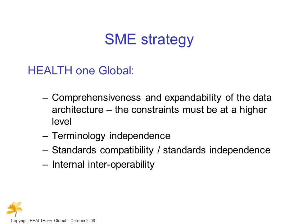 Copyright HEALTHone Global – October 2006 SME strategy –Comprehensiveness and expandability of the data architecture – the constraints must be at a higher level –Terminology independence –Standards compatibility / standards independence –Internal inter-operability HEALTH one Global: