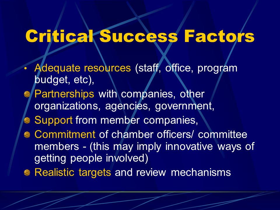 Critical Success Factors Adequate resources (staff, office, program budget, etc), Partnerships with companies, other organizations, agencies, governme