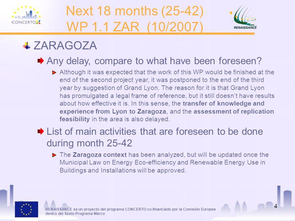 RENAISSANCE es un proyecto del programa CONCERTO co-financiado por la Comisión Europea dentro del Sexto Programa Marco 4 Next 18 months (25-42) WP 1.1