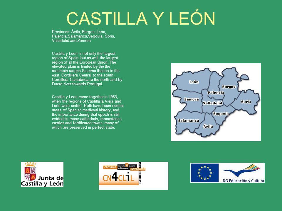 CASTILLA Y LEÓN Provinces: Ávila, Burgos, León, Palencia,Salamanca,Segovia, Soria, Valladolid and Zamora Castilla y Leon is not only the largest region of Spain, but as well the largest region of all the European Union.