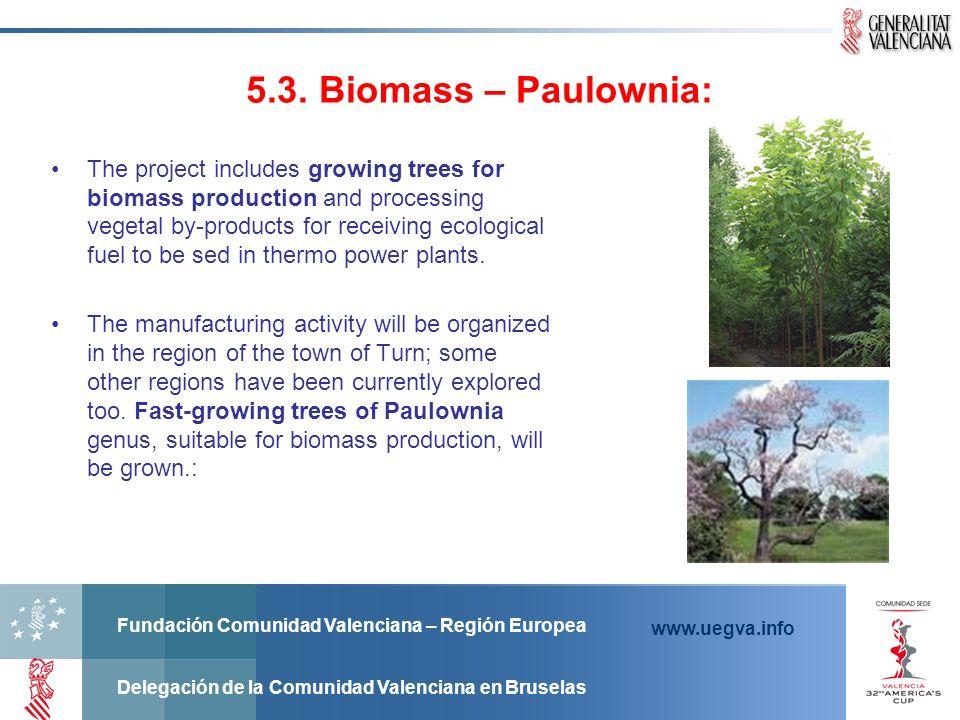 Fundación Comunidad Valenciana – Región Europea Delegación de la Comunidad Valenciana en Bruselas www.uegva.info 5.3. Biomass – Paulownia: The project
