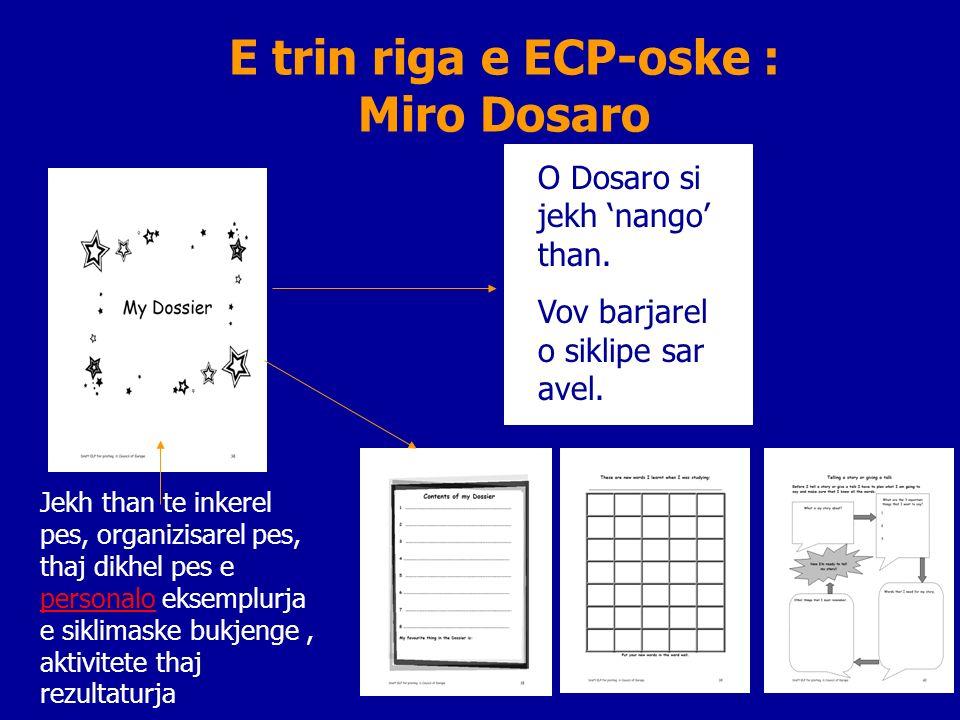 E trin riga e ECP-oske : Miro Dosaro Jekh than te inkerel pes, organizisarel pes, thaj dikhel pes e personalo eksemplurja e siklimaske bukjenge, aktivitete thaj rezultaturja.