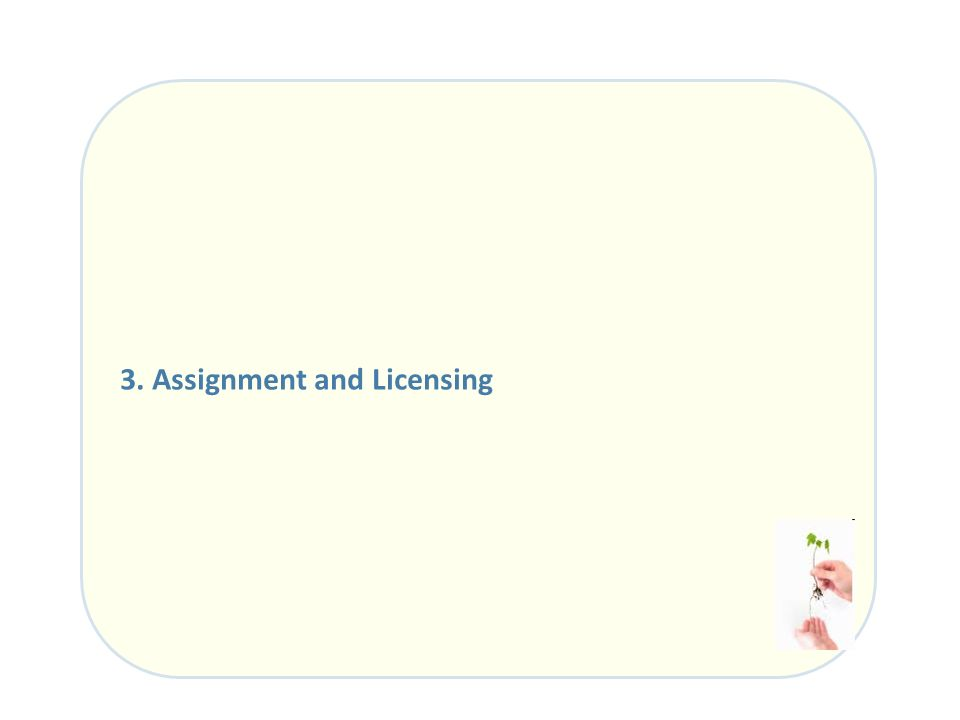 3. Assignment and Licensing
