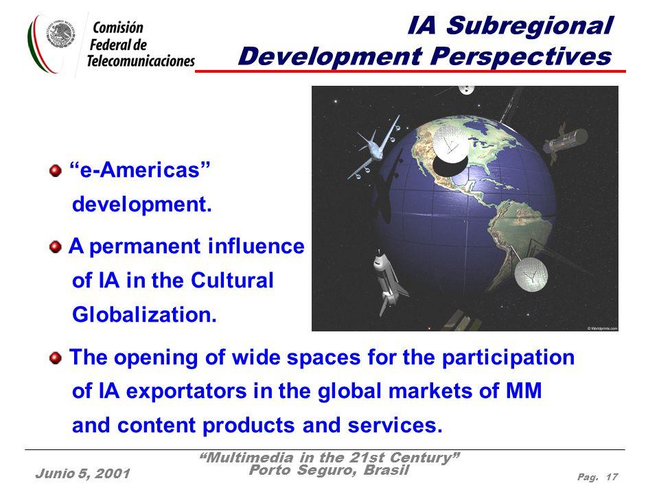 Multimedia in the 21st Century Porto Seguro, Brasil Junio 5, 2001 Pag. 17 IA Subregional Development Perspectives e-Americas development. A permanent