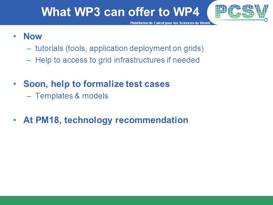 Plateforme de Calcul pour les Sciences du Vivant What WP3 can offer to WP4 Now –tutorials (tools, application deployment on grids) –Help to access to