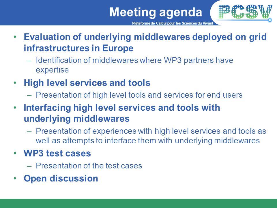 Plateforme de Calcul pour les Sciences du Vivant Meeting agenda Evaluation of underlying middlewares deployed on grid infrastructures in Europe –Ident