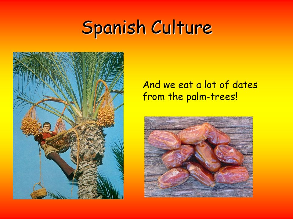 And we eat a lot of dates from the palm-trees!