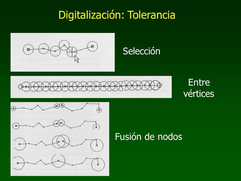 Digitalización: Tolerancia Selección Entre vértices Fusión de nodos