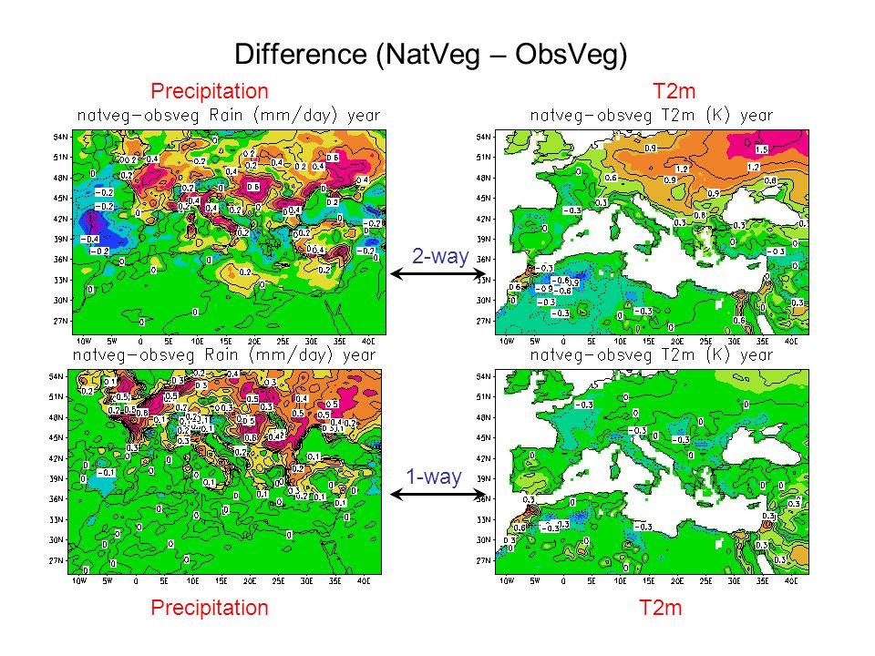 Difference (NatVeg – ObsVeg) 2-way 1-way PrecipitationT2m PrecipitationT2m