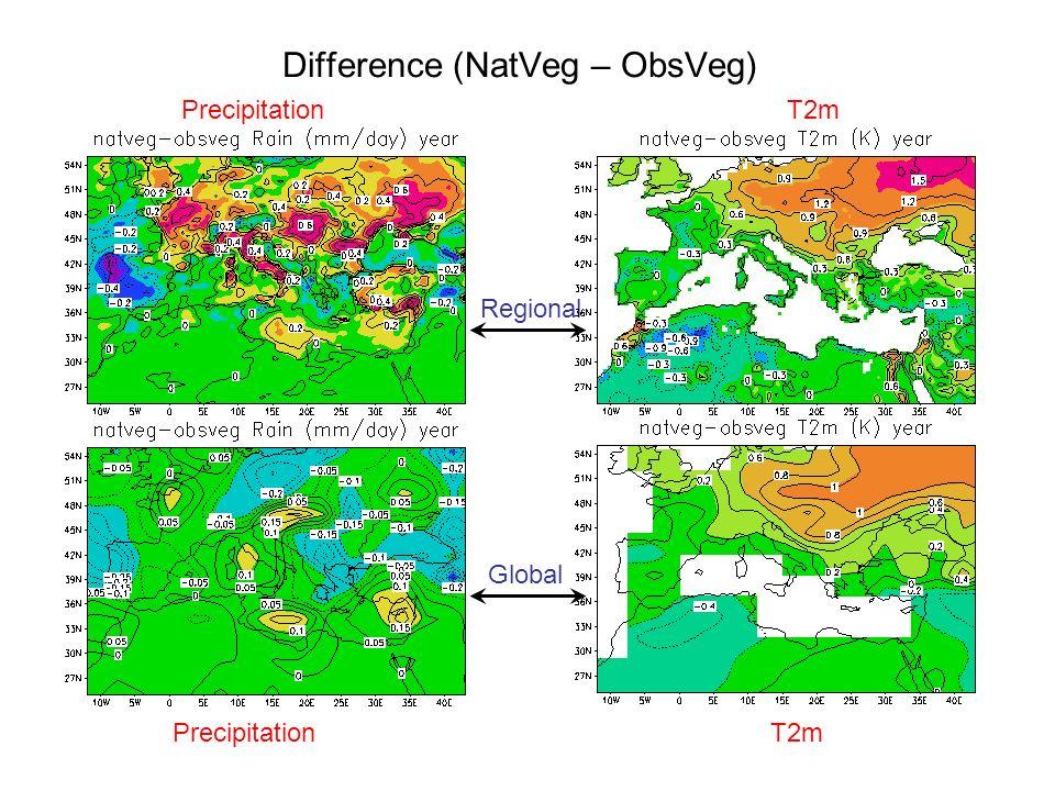 Difference (NatVeg – ObsVeg) Regional Global PrecipitationT2m PrecipitationT2m