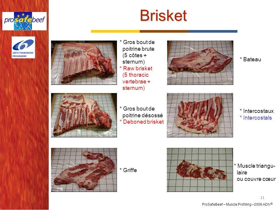 ProSafeBeef – Muscle Profiling –2009 ADIV © Brisket * Gros bout de poitrine brute (5 côtes + sternum) * Raw brisket (5 thoracic vertebrae + sternum) *
