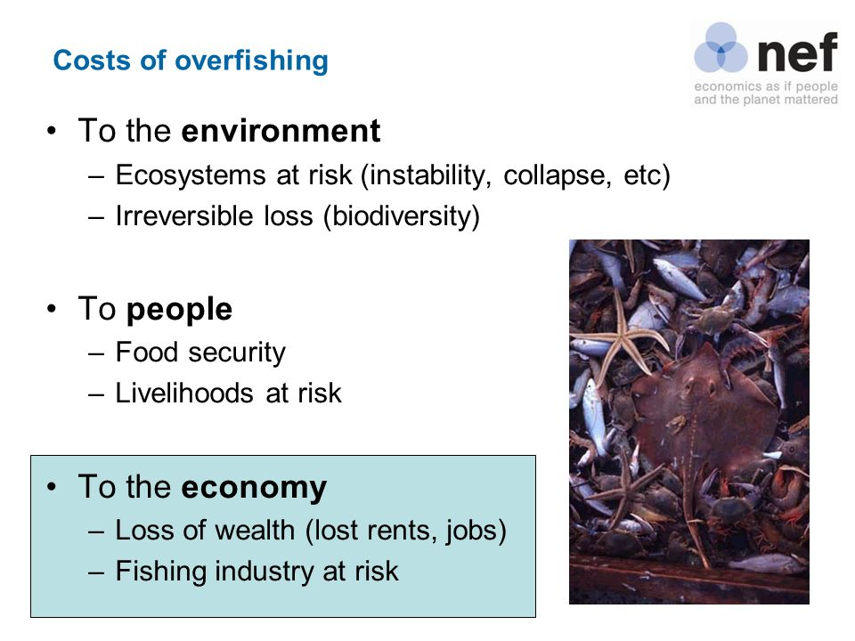 Costs of overfishing To the environment –Ecosystems at risk (instability, collapse, etc) –Irreversible loss (biodiversity) To people –Food security –L