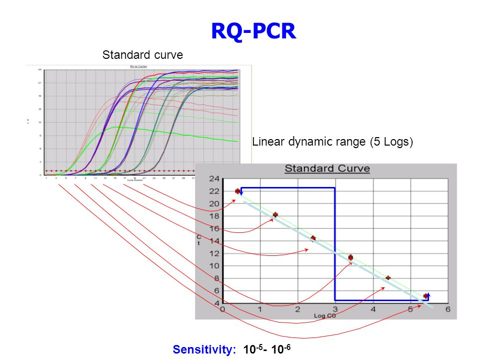 Standard curve Linear dynamic range (5 Logs) RQ-PCR Sensitivity: 10 -5 - 10 -6