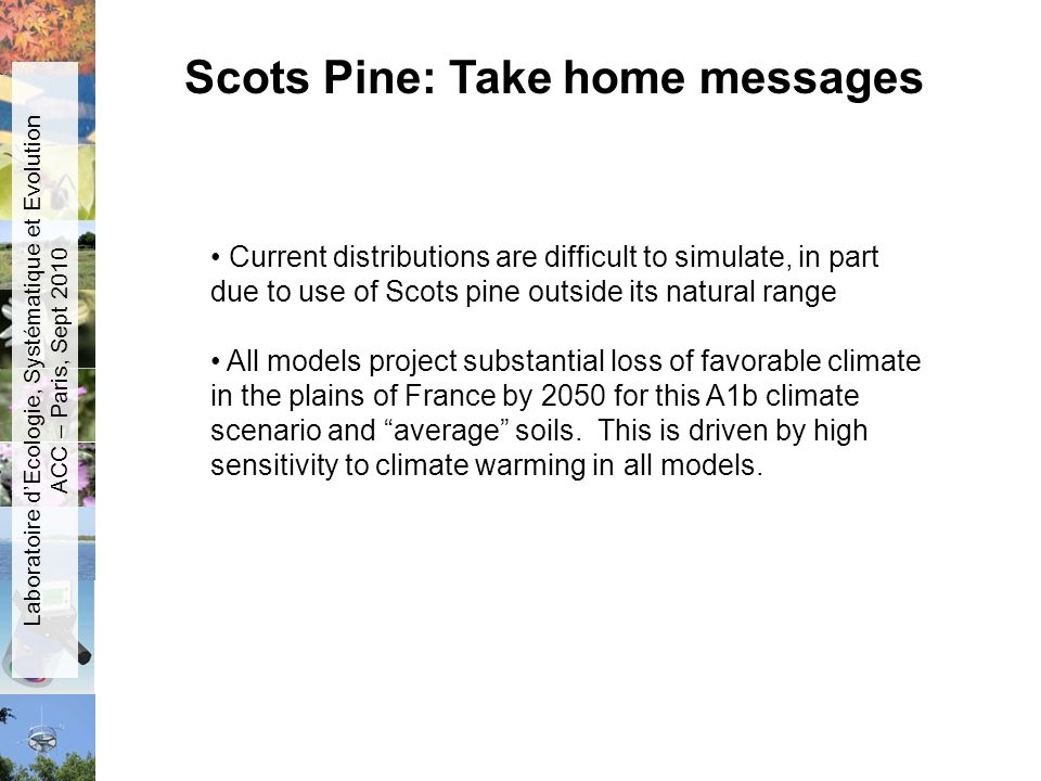 Current distributions are difficult to simulate, in part due to use of Scots pine outside its natural range All models project substantial loss of fav