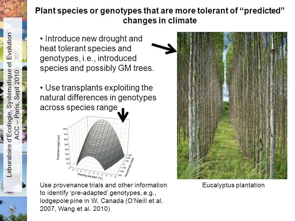 Plant species or genotypes that are more tolerant of predicted changes in climate Introduce new drought and heat tolerant species and genotypes, i.e.,