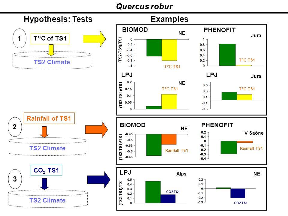 Quercus robur Hypothesis: Tests TS2 Climate T°C of TS1 TS2 Climate 1 2 Rainfall of TS1 TS2 Climate 3 CO 2 TS1 Examples BIOMOD NE (TS2-TS1)/TS1 PHENOFI