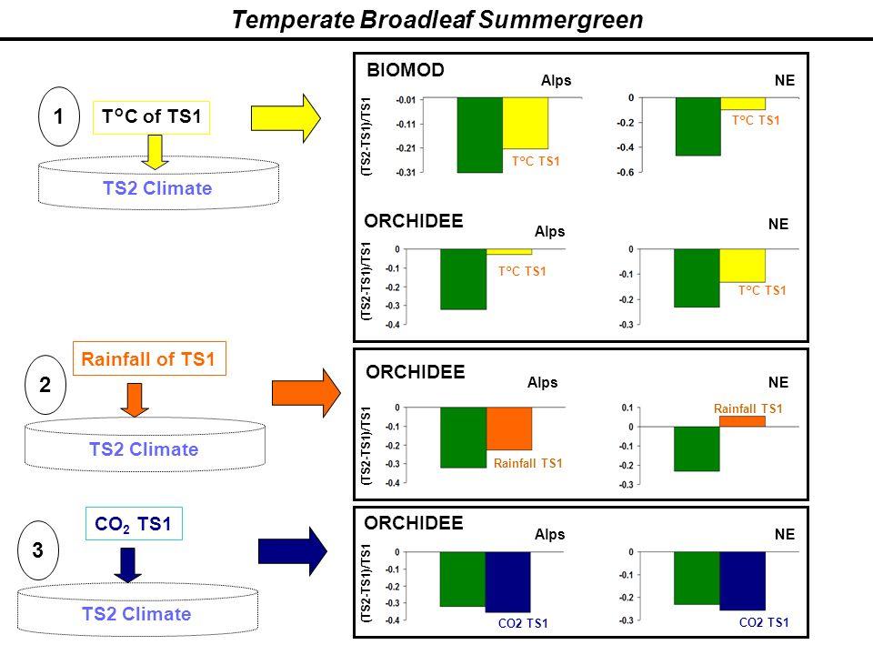 Temperate Broadleaf Summergreen TS2 Climate T°C of TS1 TS2 Climate 1 2 Rainfall of TS1 TS2 Climate 3 CO 2 TS1 BIOMOD ORCHIDEE CO2 TS1 Alps (TS2-TS1)/T