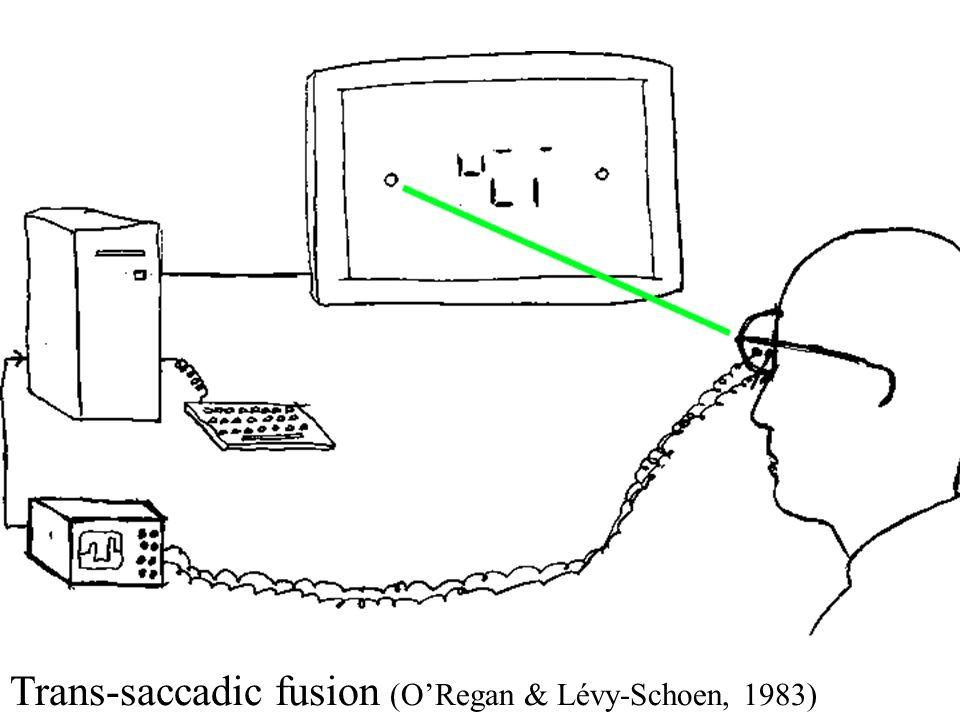 Trans-saccadic fusion (ORegan & Lévy-Schoen, 1983)