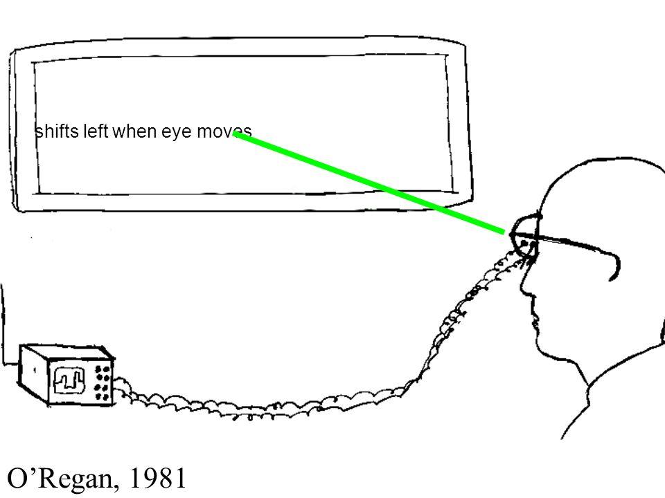 shifts left when eye moves ORegan, 1981