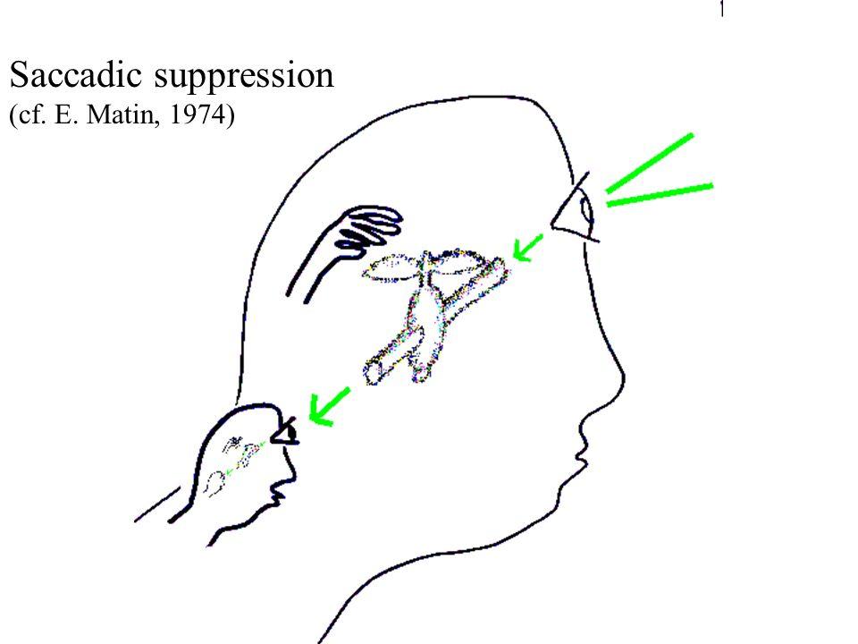 Saccadic suppression (cf. E. Matin, 1974)