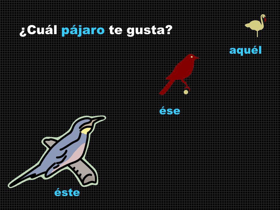 ¿Cuál pájaro te gusta? ése éste aquél