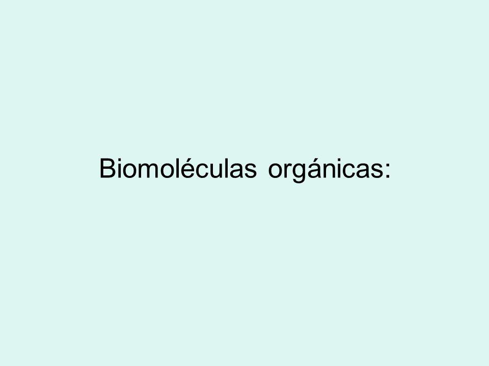 Biomoléculas orgánicas: