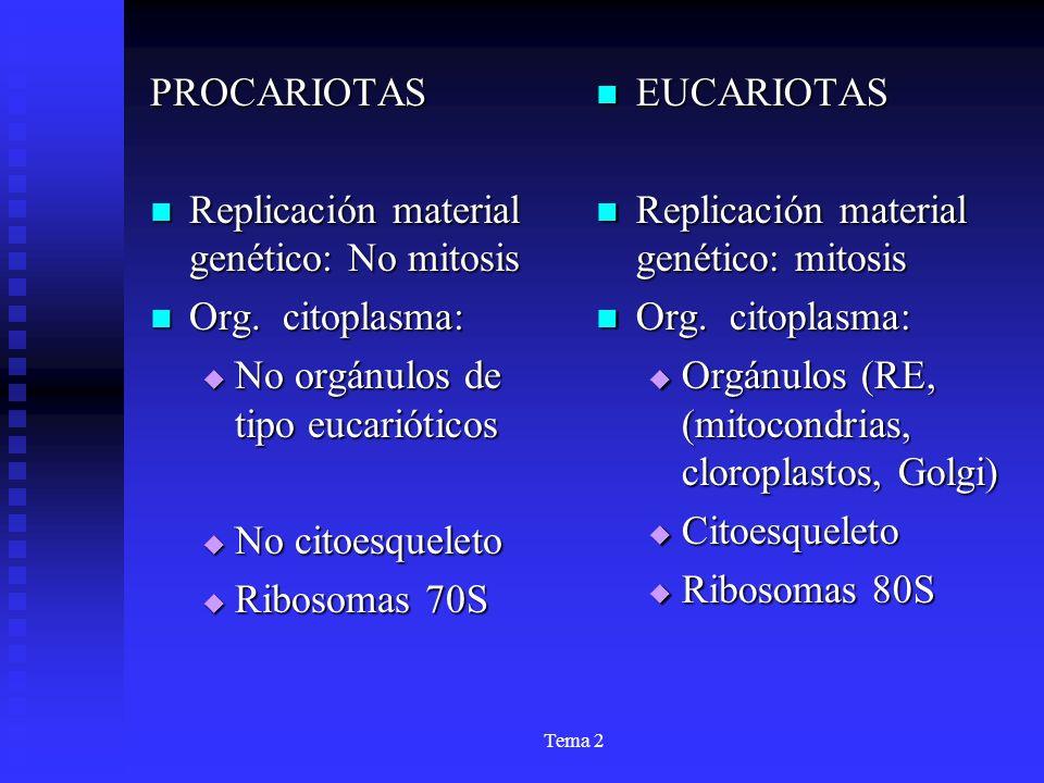 Tema 2 PROCARIOTAS Replicación material genético: No mitosis Replicación material genético: No mitosis Org. citoplasma: Org. citoplasma: No orgánulos
