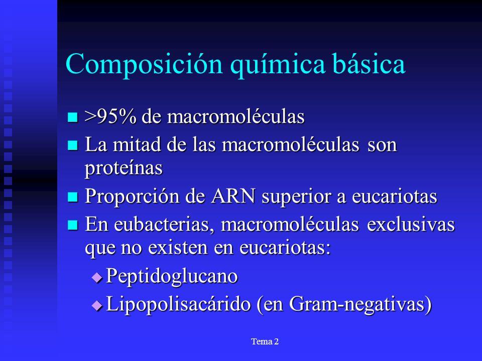 Tema 2 Composición química básica >95% de macromoléculas >95% de macromoléculas La mitad de las macromoléculas son proteínas La mitad de las macromolé
