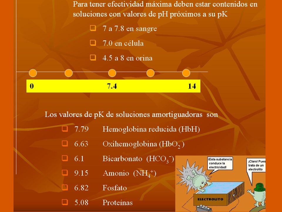 ECUACIÓN DE HENDERSON - HASSELBACH Principio isohídrico RiñonesPulmones