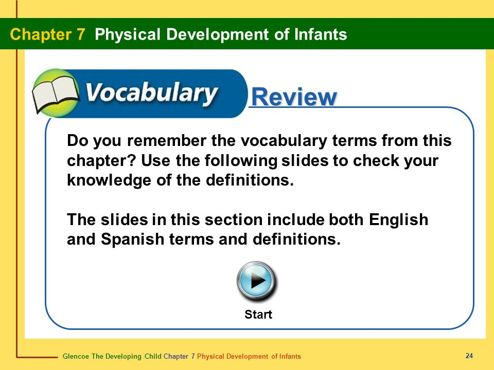 Glencoe The Developing Child Chapter 7 Physical Development of Infants Chapter 7 Physical Development of Infants 24 Review Do you remember the vocabul