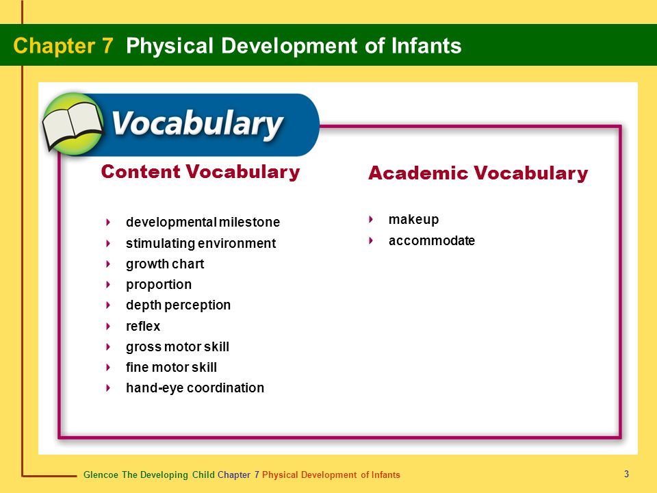 Glencoe The Developing Child Chapter 7 Physical Development of Infants Chapter 7 Physical Development of Infants 3 Content Vocabulary Academic Vocabul