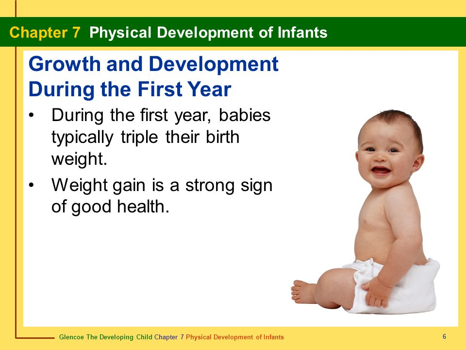 Glencoe The Developing Child Chapter 7 Physical Development of Infants Chapter 7 Physical Development of Infants 6 During the first year, babies typic
