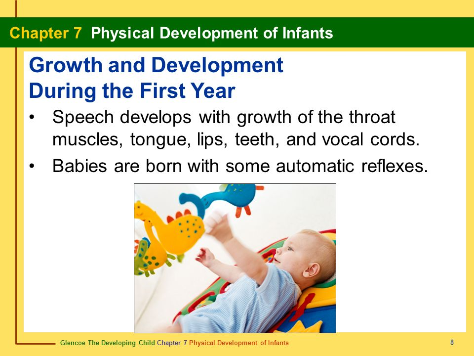 Glencoe The Developing Child Chapter 7 Physical Development of Infants Chapter 7 Physical Development of Infants 8 Speech develops with growth of the