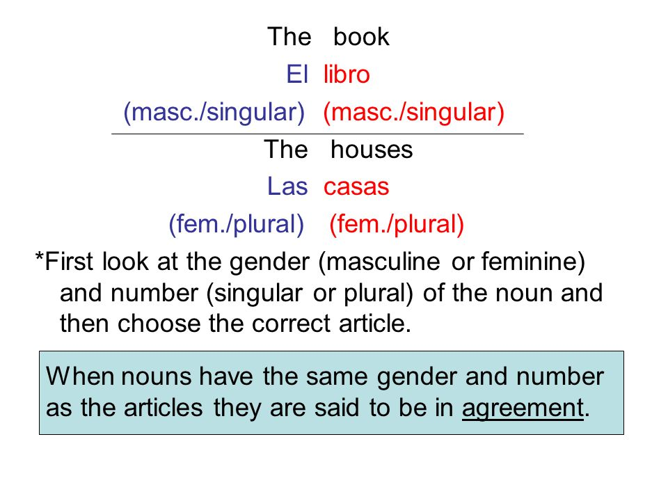 The book El libro (masc./singular) (masc./singular) The houses Las casas (fem./plural) *First look at the gender (masculine or feminine) and number (s