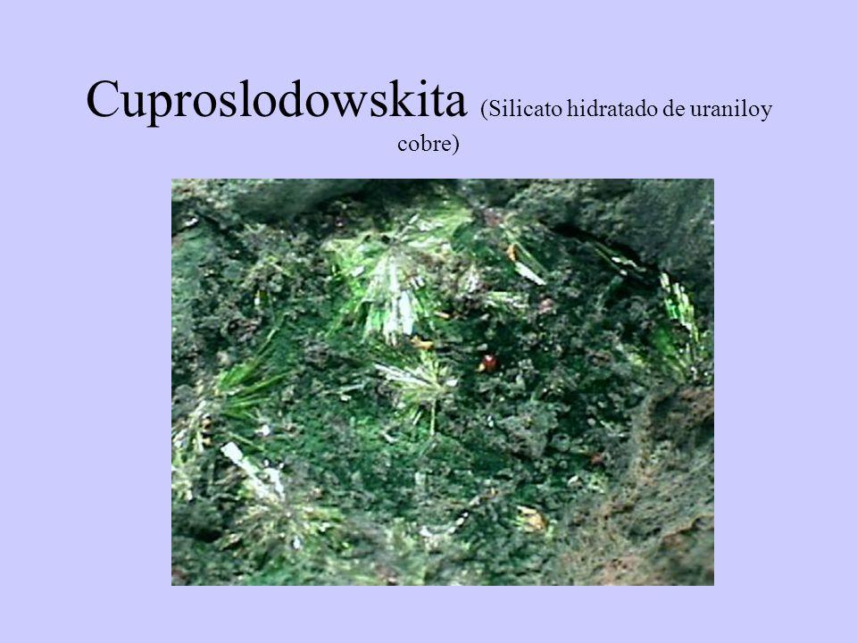 Cuproslodowskita (Silicato hidratado de uraniloy cobre)