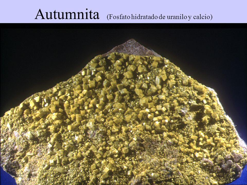 Autumnita (Fosfato hidratado de uranilo y calcio)
