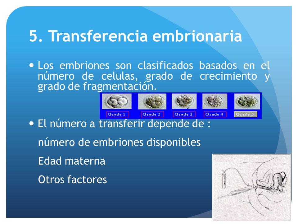 5. Transferencia embrionaria Los embriones son clasificados basados en el número de celulas, grado de crecimiento y grado de fragmentación. El número