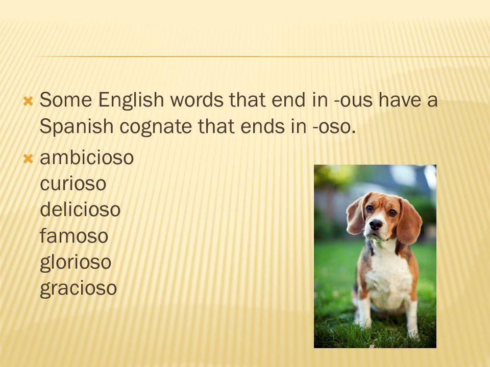 Some English words that end in -ous have a Spanish cognate that ends in -oso. ambicioso curioso delicioso famoso glorioso gracioso